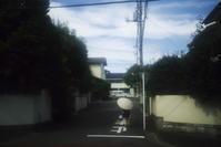 朝の散歩(3cut) -     ~風に乗って~    Present
