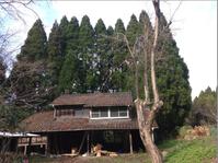 伐採 できるかな01:隣地の所有者に手紙を出してみる - 古民家再生できるかな