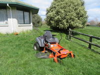 芝刈りと桜 - いい旅・夢Kiwi スカイキウィの夢日記