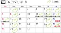 10月営業日のお知らせ - 豆月のまめ日和