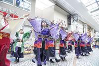 第4回良さ来い!茶ノ国祭り 『浜松学生連鰻陀羅』 - tamaranyのお散歩2