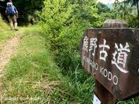 旅フォト:熊野古道中辺路その1/サンティアゴ巡礼番外編 - 映画を旅のいいわけに。