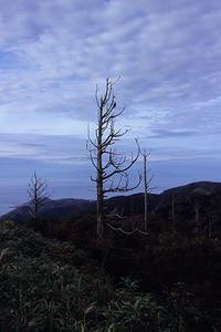 眺瞰台(海旅2018.09.12~14) - ちわりくんのありふれた毎日II