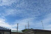台風24号の惨禍 - 光さんの日常
