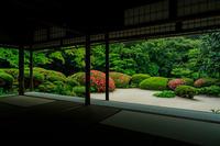 詩仙堂・サツキの頃 - 花景色-K.W.C. PhotoBlog