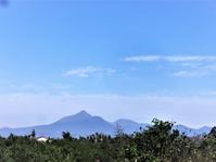 霧島山 - だんご虫の花