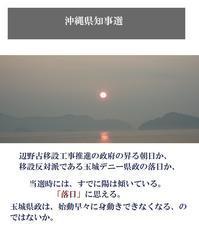 穴だらけの玉城沖縄県政東京カラス - 東京カラスの国会白昼夢