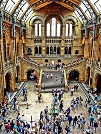 Natural history museum London - マレエモンテの日々