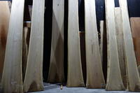黄肌(キハダ)一枚板 - SOLiD「無垢材セレクトカタログ」/ 材木店・製材所 新発田屋(シバタヤ)