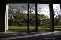 額絵のような - Noriko's Photo  -light & shadow-