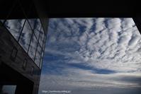 秋空 - Noriko's Photo  -light & shadow-