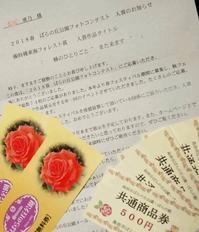フォトコンテスト入賞 - 日々綴り