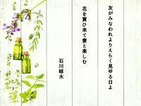 短歌「花は救い」 - 365日・花と短歌