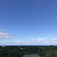 シマというおくすり(1)トヨおばあとドラゴンフルーツと西表島 - ココロとカラダは大事な相方 アーユルヴェーダ案内人・くれはるのブログ