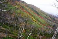 大雪山一の紅葉スポット、銀泉台 - Turfに魅せられて・・・(写真紀行)