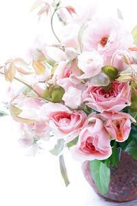 WABARA特別レッスン始まりました - お花に囲まれて