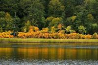 みちのく紅葉景色2 - みちのくの大自然