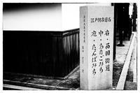 散歩向日町-137 - Hare's Photolog
