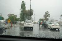 三日目は大雨 - 亜熱帯天文台ブログ