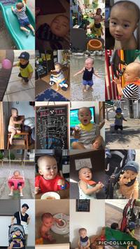 1歳2ヶ月〜1歳3ヶ月まとめ - 乳姉と子牛の日記
