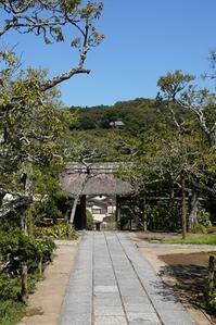 秋の北鎌倉散歩東慶寺 - エーデルワイスPhoto