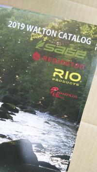 2019年のカタログが届きました!【SAGE・REDINGTON・RIO・NAUTILUS】 - フライフィッシングショップ  ループノット です