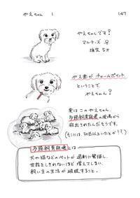 やえちゃん1 - 今日もゆくねこ