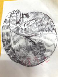 一日一絵      猫スケッチ練習帳 - ~メインクーンと一緒~デナちな日々