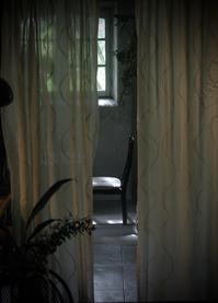 お知らせ - Arboreo  studio fotografico e caffe      『フォトスタジオと大人の小さなカフェ』