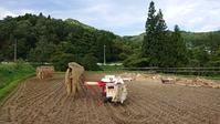 平成30年の米作り終了! - 今から・花