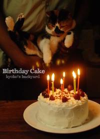 オットの誕生日ケーキ - Kyoko's Backyard ~アメリカで田舎暮らし~