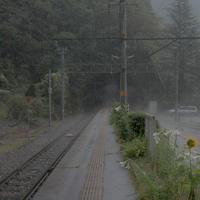 通り雨 - larywa