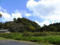 久しぶり?の青空です - 千葉県いすみ環境と文化のさとセンター