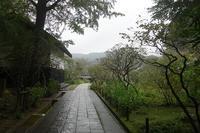 凛とした空気と静かに満ち渡る雨音が 北鎌倉東慶寺にて - 横須賀から発信   プラス プロスペクトコッテージ 一級建築士事務所