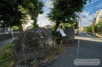 猫伏石 - Mark.M.Watanabeの熊本撮影紀行
