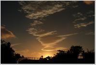 夕べから今朝 - ハチミツの海を渡る風の音