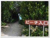 2018夏の沖縄5日目その2 喜瀬ビーチパレスのビーチでビーチコーミング - Stay Green 2