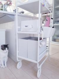 【無印良品週間】IKEAの真っ白ワゴンにジャストフィット - ねことおうち