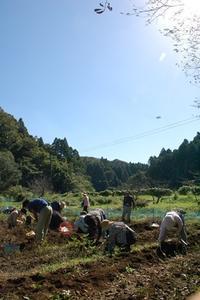 実りの秋♪食品ロスを減らそう! - 千葉県いすみ環境と文化のさとセンター