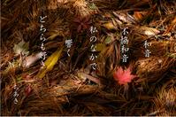 あいそめの湯フォト五行歌展示 - 風祭智秋の五行歌ブログ