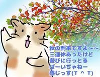 T中学の入試説明会に行ったハナシ - もるもってぃ家の中学受験ぶろぐin東海地方