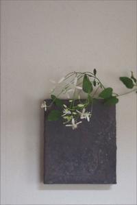 掛花 - なづな雑記
