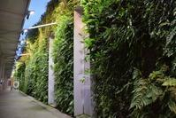 新山口駅南北自由通路 垂直庭園 - ブルーアワーの街の情景
