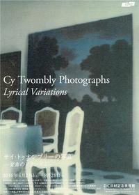 サイ・トゥオンブリーの写真 - Art Museum Flyer Collection