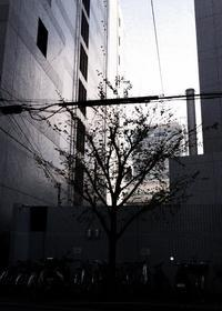 大阪市西区 - area code 072