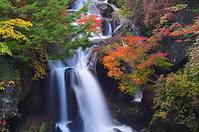 秋色竜頭の滝 - 風の香に誘われて 風景のふぉと缶