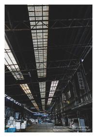 市場の屋根 - ♉ mototaurus photography