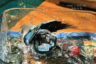 水浴びB.Bの記録(9月28日・Ⅲ) - FUNKY'S BLUE SKY