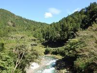 『神崎川に沿って・・・(流れと花と蝶)』 - 自然風の自然風だより