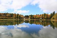 紅葉が始まっていました。上ノ平高原 - 野沢温泉とその周辺いろいろ